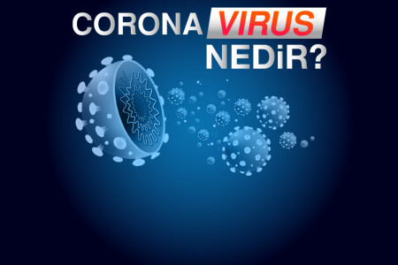 Coronavirus Nedir? Bilgilendirme